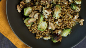 Warm lentil and Brussels sprouts salad