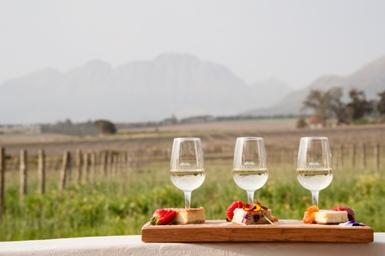 Eikendal Vineyards swirls Cheesecake and Wine Pairings this summer