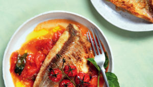 Grilled fish on olive-oil tomato sauce