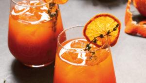 Cape citrus G&Ts